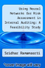 cover of Using Neural Networks for Risk Assessment in Internal Auditing: A Feasibility Study
