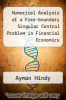 cover of Numerical Analysis of a Free-boundary Singular Control Problem in Financial Economics