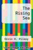 cover of The Rising Sea